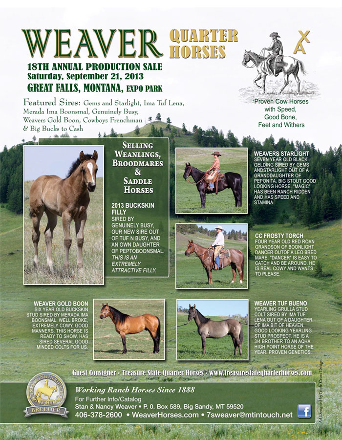Weaver Quarter Horse News